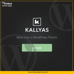 KALLYAS Creative eCommerce WordPress Theme