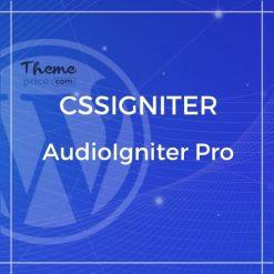 AudioIgniter Pro