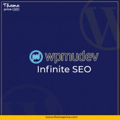 WPMU DEV Infinite SEO